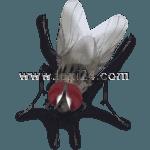 little housefly
