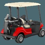 golf cart: back view