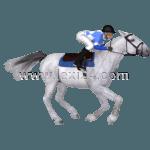 mounted racing
