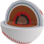 cross section of a baseball